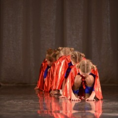 «Северная пальмира» - 2014